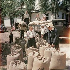 Трудовые будни: неизвестные цветные фото повседневной жизни в СССР 1950-х • НОВОСТИ В ФОТОГРАФИЯХ
