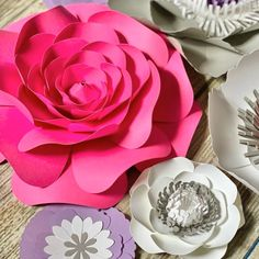 Paper flower templates and tutorials