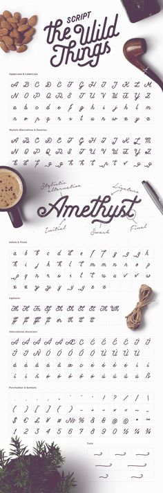 The Wild Things Script Font Alphabet, handwritten with flourishes and tails