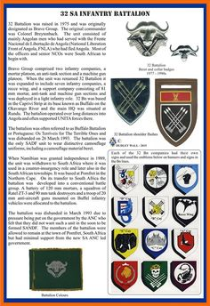 Service Medals, School Of Engineering, Military Insignia, Defence Force, Best Sleeve Tattoos, Tactical Survival, Military Service, African Countries, Special Forces