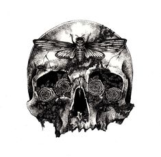 We're always enthralled by Melbourne-based artist Annita Maslov's grotesque and alluring pen and ink illustrations. We hope you enjoy this sampling of. Crane, Half Skull, Year Of The Snake, Skulls And Roses, Ink Illustrations, Wolf Illustration, Tattoo Sketches, Skull Art, Limited Edition Prints