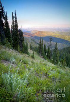 Selway-Bitterroot Wilderness, Idaho