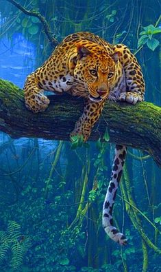 Discover & Share this Leopard GIF with everyone you know. GIPHY is how you search, share, discover, and create GIFs. Tiger Pictures, Wild Animals Pictures, Animal Pictures, Big Cats Art, Cat Art, Animals And Pets, Cute Animals, Angry Animals, Wild Animal Wallpaper