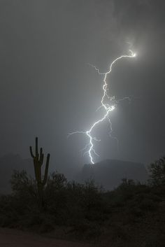 Breathtaking!!   thunderstorm     nature     amazingnature   #nature #amazingnature https://biopop.com/
