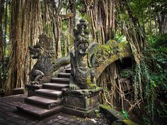 Photo about An impressive pathway/bridge cuts through the roots of a banyan tree and crosses a gorge in Ubud s Monkey Forest Sanctuary in Bali, Indonesia. Image of tree, east, hindu - 34384476 Bali Lombok, Ubud, Places To Travel, Places To See, Time Travel, Voyage Bali, Bali Holidays, Bali Travel, Places