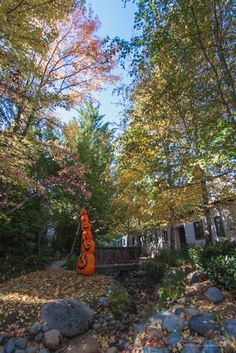 Fabulous fall color at the Outside Inn, photo by @Lenka Vodicka-Paredes