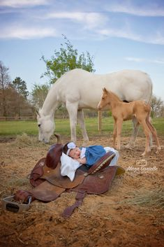 Baby with horses photoshoot. Newborn with newborn animals. Cute Pregnancy Pictures, Newborn Family Pictures, Toddler Pictures, Baby Girl Pictures, Western Maternity, Fall Maternity Photos, Country Maternity, Country Baby Announcement, Western Baby Pictures