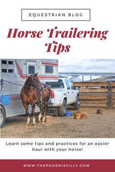 Don't let trailering be stressful! Here are some horse trailering tips and p… Don't let trailering be stressful! Here are some horse trailering tips and practices to make hauling horses a better experience for both humans and horses. Dressage, Horse Care Tips, Horse Training Tips, Equestrian Outfits, Equestrian Style, Equestrian Problems, Horse Trailers, Horse Riding, Western Riding