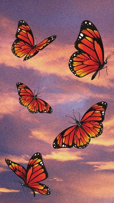 Aesthetic Wallpaper With Pink and Orange Sunset and Butterflies