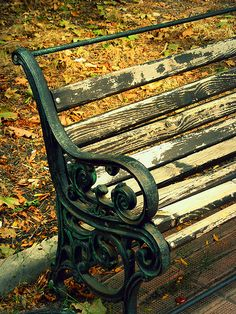 Untitled Cast Iron Bench, Park Benches, Famous Photos, Mongolia, Plaza, Color Photography, It Cast, Black And White, Outdoor Decor