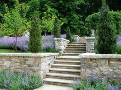 erin's art and gardens: escape to the garden part II.......let's throw in another staircase surrounded with perfectly manicured shrubs and hedges