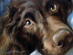 Mary is adding Boykin Spaniel to the portfolio! She will paint yours too!