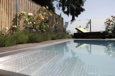 Pool Nice Asses