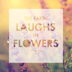 Muurdecoratie The earth laughs in flowers via | ohsolovelyblog.com