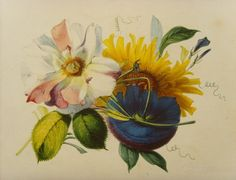 Antiques Atlas - Mrs. F.T.Lines Botanical Watercolour Rose C.1850 Watercolour Paintings, Watercolor Rose, Castle School, Royal Society Of Arts, Teaching Drawing, Picture Wire, Antiques, Drawings, Flowers