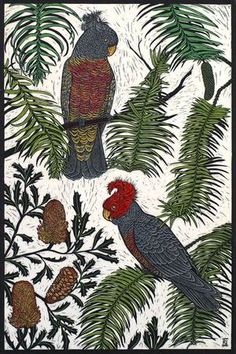Art cards by Rachel Newling featuring her linocuts and drawings of Australian birds, wildlife, flowers and bird portraits from the birdland series. Card wallet packs, single cards & mounted cards for sale Australian Parrots, Australian Art, Australian Painting, Scratchboard, Textile Fiber Art, Cockatoo, Aboriginal Art, Wildlife Art, Botanical Illustration