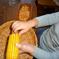 fall practical life work--removing corn from the cob