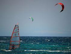 Wind and Kite Surfing on the Kohala Coast, Hawaii Island Island Beach, Big Island, Hawaii Vacation Rentals, Kohala Coast, White Sand Beach, Kite, Golden Gate Bridge, Surfing, Cottage