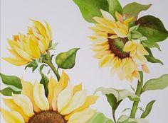 해바라기와 함께하며 행복했던 작업◇Sunflower◇ Paper•Saunders Waterford 300g Watercolor&#...