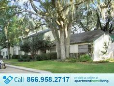 57 best jacksonville homes for rent images renting a house rh pinterest com