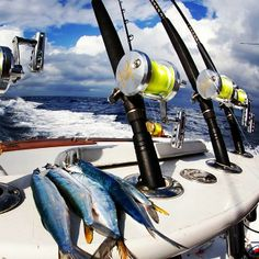 Go on a charter boat for offshore fishing during #OuterBanks vacations! http://www.pirates-cove.com/