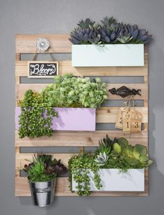 Trendy Wood pallet with succulents. So easy to do. #succulent #diy #pallet #craftwarehouse craftwarehouse.com