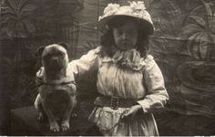 old time pug picture - Google Search