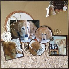 Andi, I saw this and thought of you! Yours was cuter though Dog Scrapbook Layouts, Scrapbook Journal, Baby Scrapbook, Scrapbook Paper Crafts, Scrapbook Cards, Scrapbook Templates, Heritage Scrapbooking, Digital Scrapbooking, Love Your Pet