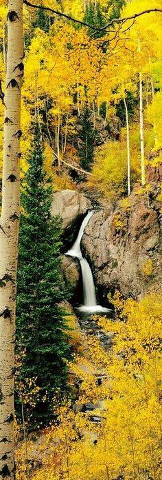 Nellie Creek Falls, Lake City, Colorado