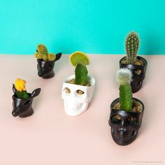 스컬 세라믹 홀더skull ceramic holder  by the jacks
