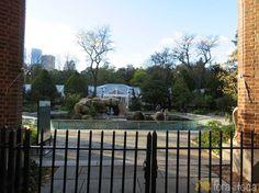 parte central do Central Park Zoo a piscina dos leões marinhos