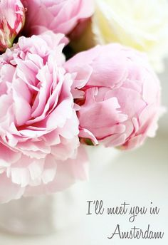 """i'm not sure if this really goes in my """"gifting"""" category but i like flowers as gifts, so why not? especially if they are pretty pink peonies like these here."""