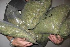 Bus Laden With 905.25kg Cannabis Abandoned At Military Check Point   The Kogi State Command of National Drug Law Enforcement Agency (NDLEA), has impounded a bus loaded with a totalr of 905.25Kg of Cannabis Sativa (weeds suspected to be india Hemp. The impounded bus,a J5 with registration number Nasarawa,   XA815LFA according to the state commandant of NDLEA, Idris Bello, - See more at: http://firstafricanews.ng/index.php?dbs=openlist&s=13231#sthash.h3FQV1xw.dpuf