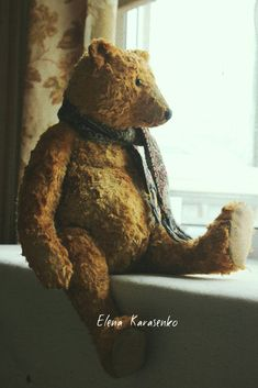 Teddy deep in thought