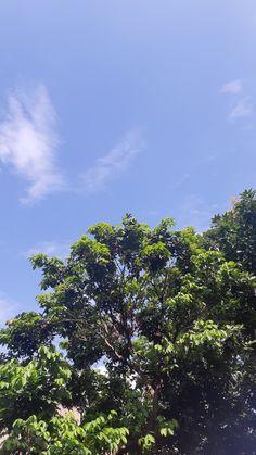 Pretty Sky, Beautiful Sky, Tumblr Photography, Nature Photography, Photography Wallpapers, Tumblr Wallpaper, Nature Wallpaper, Aesthetic Iphone Wallpaper, Aesthetic Wallpapers