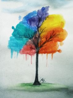 Rainbow tree by Latruffe !