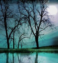 Ciel de nuit 11x17inches photographie de par dahliahousestudios