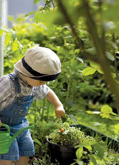 a little boy being helpful in the vegetable garden