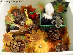 Autumn sensory bin- love the acorns, leaves, and animals- would go great with The Chipmunk at Hollow Tree Lane