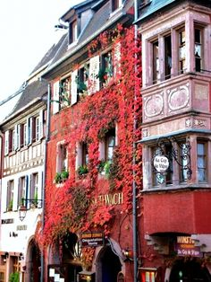 Riquewihr, Alsace, France♥...spent a couple days here a few years back...fantastic place...great Rieslings!!