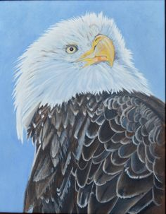 An Eagle Painted in Acrylics by MaryAnnBlosser on Etsy