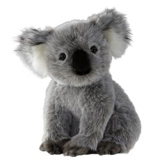 16 Best Stuffed Koalas Images Koala Bears Koalas Baby Koala