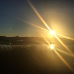 Dat reflection doe.  #nature #sun #sunshine #sunset #reflection #sky #water #birding #missouri #outdoors #getoutside #explorenature #fall #weekend by birdnerdroach