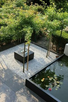 Courtyard idea's
