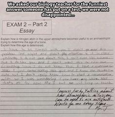 Dumb essay answers