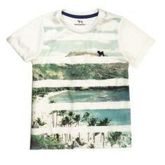 Camiseta Flamê com Listras Estampadas - Charpey