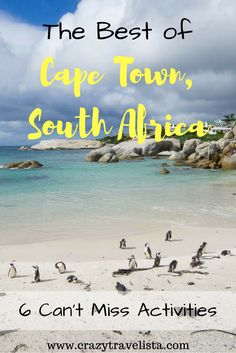 6 awesome activities you cannot leave Cape Town without doing!