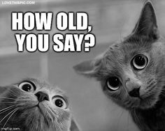 How old, you say?