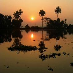 Allapey back waters, Kerala India