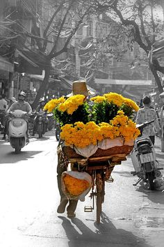 Spring flowers on the street - Movable flowers shop @ Hanoi's ancient streets. Spring 2013.